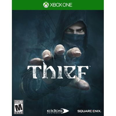 Thief-25-2-2014