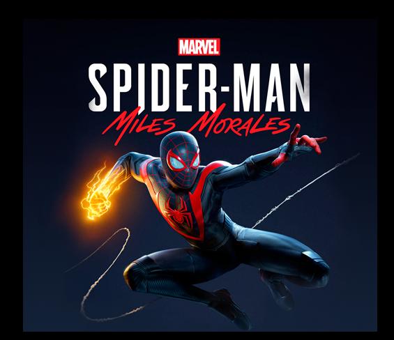 banner spider